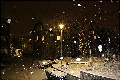 sneeeg.jpg